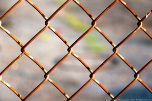 Chain Link Fence in Mt Vernon