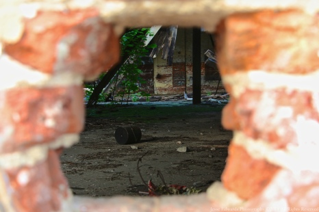 Through the Wall of an Abandoned Building in Mt Vernon